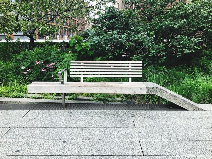 Bench Park - Man Made Space Absence Outdoors Day No People Plant Growth Seat Nature Tree NYC Photography Enjoying The Moment Taking Pictures Hanging Out City Life NYC LIFE ♥ High Line Park, Nyc Park In The Sky Sommergefühle