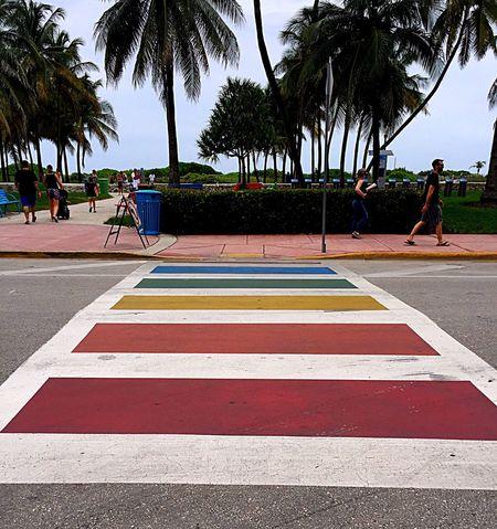 Palace Southbeach Miami Miamibeach Gay Pride Gaybar