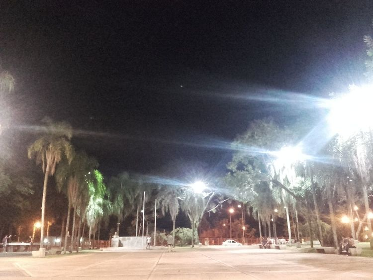 Night Sky Nature Misiones, Argentina árbol City Plaza Illuminated Outdoors No People Tree Arboles , Naturaleza Good Day Good Times Goodmorning EyeEm  Nature_collection EyeEm Q Beauty In Nature Nature Photography Life Life Is Beautiful Cityscape 🌸 Nature