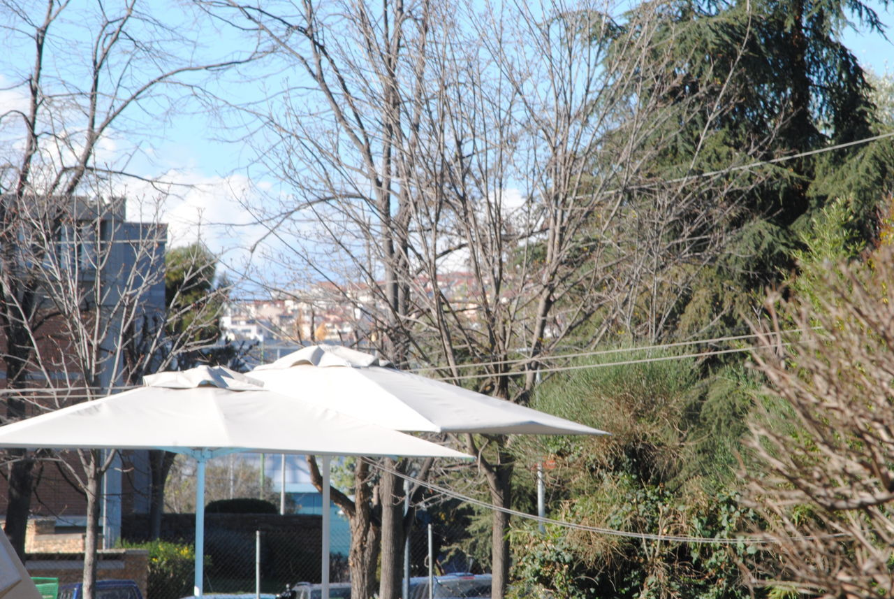 tree, day, shelter, outdoors, bare tree, no people, nature, architecture, sky
