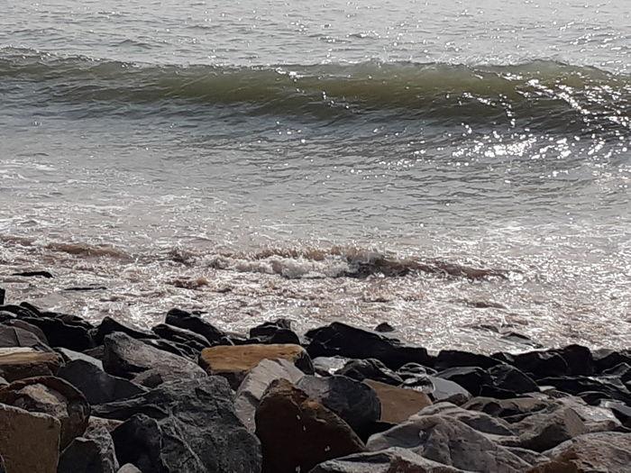Scenic view of sea shore