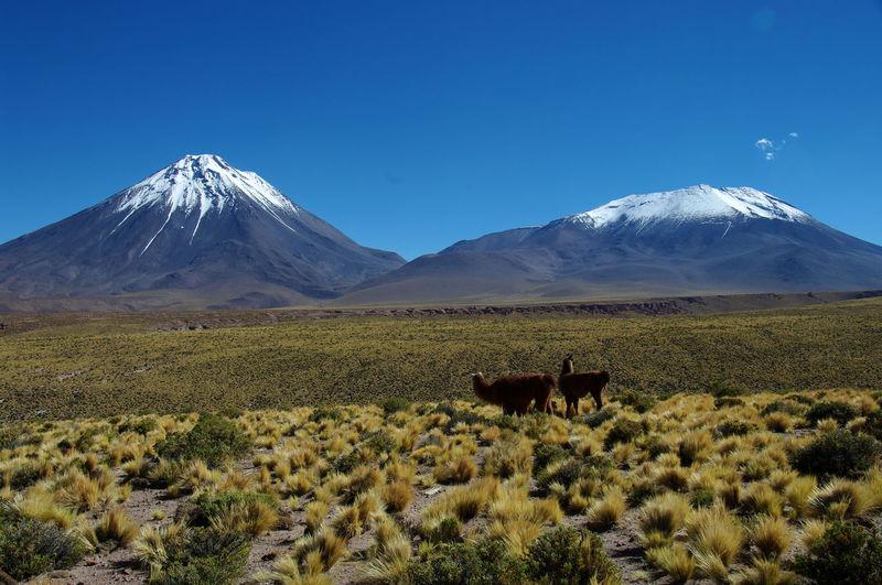 Licancabur and lascar volcanoes