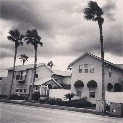 Home Bnw_captures Bnw_life_invite Bnwstreetview Bnw_photographs bnw_photos bnwalma bnwphotooftheday bnw bnw_life streetphotography streetalma street house palms sky