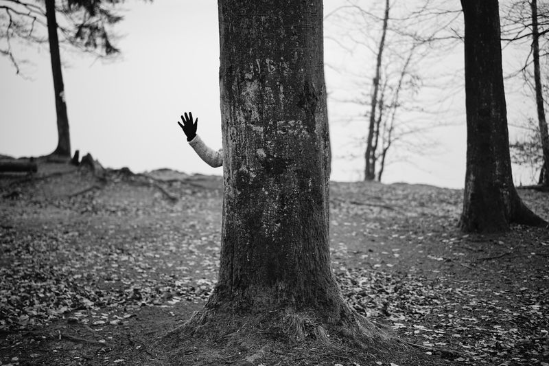 Cropped Hand By Tree Trunk On Field Against Sky