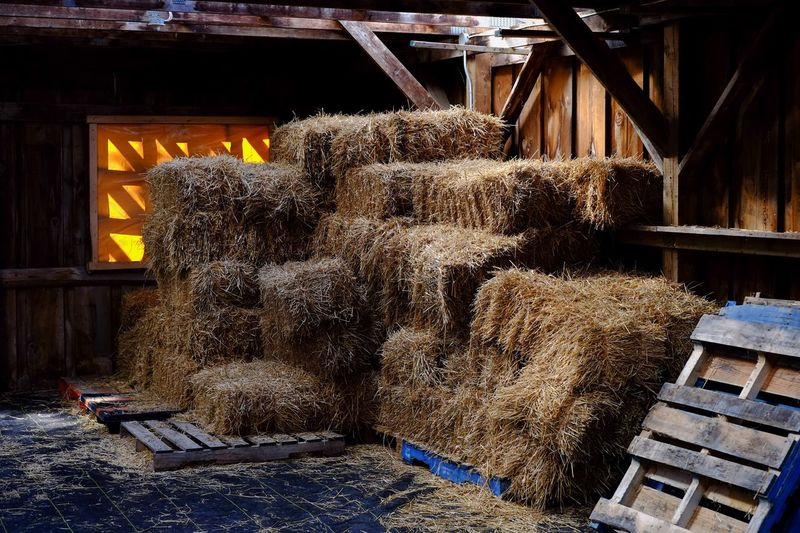Straw stacked in barn