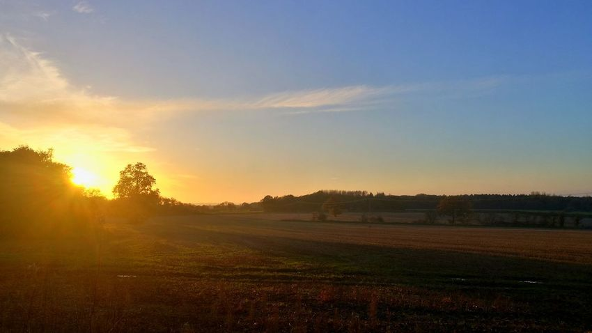 Sunset Landscape Field Beauty In Nature Sun Nature Sunlight Scenics No People Agriculture Outdoors Rural Scene Tree Autumn Sky Day Fog Autumn Agriculture Lost In The Landscape