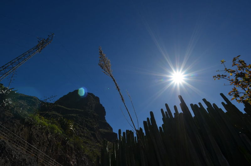 Beauty In Nature Blue Blue Sky Bright Cactus Holiday Lens Flare Light Rays Low Angle View Masca Masca Valley Mountain Mountain Range No People Remote Sun Sun Rays Sunbeam Sunlight Sunny Sunrays Sunshine Tranquil Scene Vacation Vacations