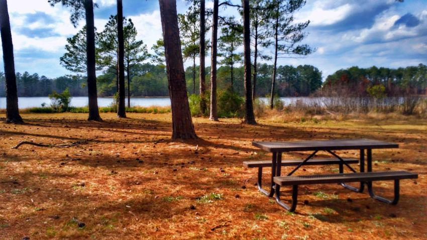 Should have had a picnic... Maybe next time? ☺ -- please feel free to join d6 Collab for free to help beta test before I close registration again: https://d6collab.com/ ✌ HDR Hdr_Collection Hdr Edit Picnic Table Lake Light And Shadow Tree Trees Nature Beauty In Nature EyeEm Nature Lover Sky Clouds And Sky No People Tree Trunk Outdoors Day Scenics Landscape Water Water_collection Cloud - Sky Landscape_Collection Growth Change