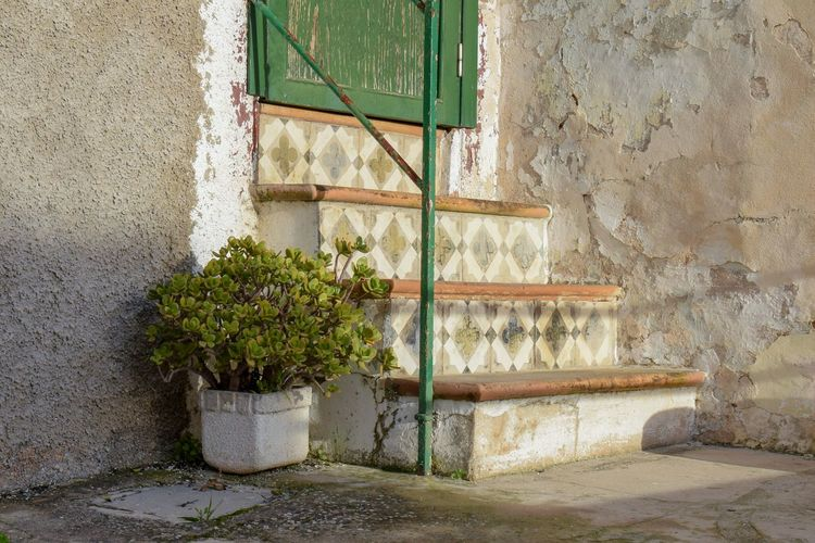 Light And Shadow Peeling Walls Outdoor Photography Fullframe Autumn Architecture Close-up Built Structure Building Exterior Plant Hand Rail Potted Plant Wall Closed Door Steps And Staircases Steps Entryway Houseplant