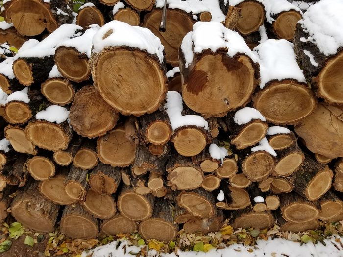 Snow On Stacked Logs During Winter