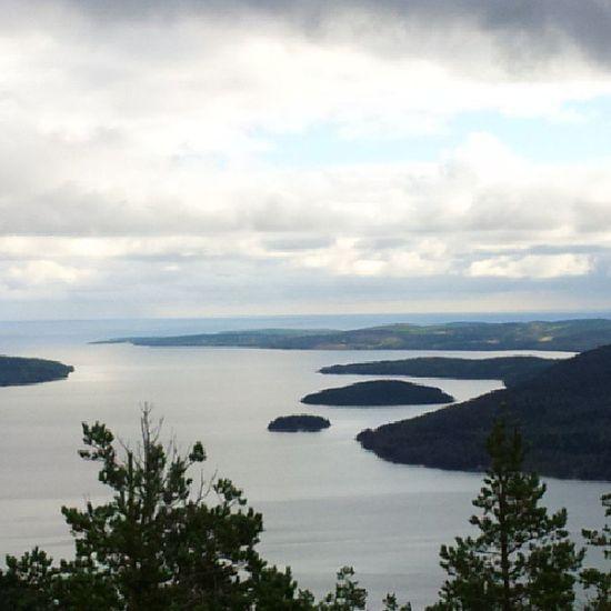 Skuleberget H ögakusten Natur Utsikt  Sverige