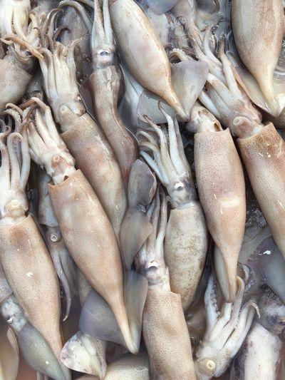 Full frame shot of calamaries for sale at market
