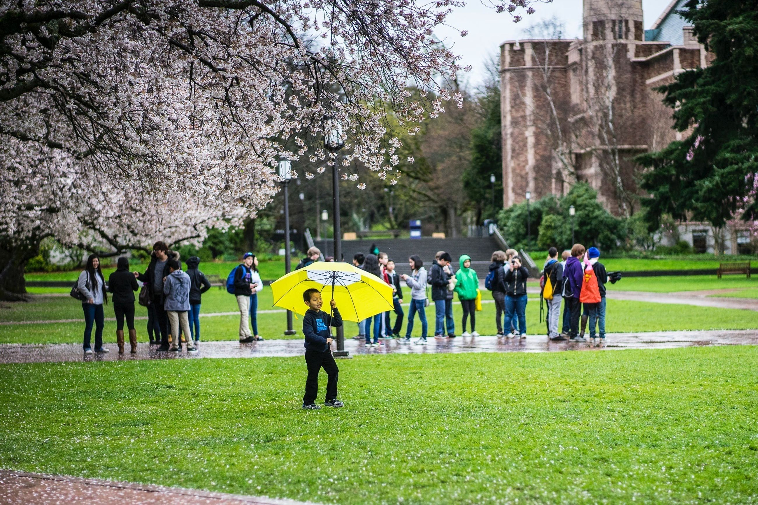 grass, lifestyles, men, leisure activity, person, large group of people, full length, walking, park - man made space, tree, togetherness, green color, rear view, casual clothing, building exterior, girls, architecture, lawn, built structure