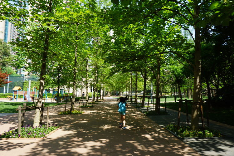Tree One Person Full Length Outdoors People Childhood Day Green Color Nature Child