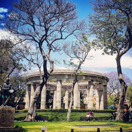 RotondaDeLosIlustres Guadalajara Turisteando Historic Downtown Color City Landscape Urban Spring Fever