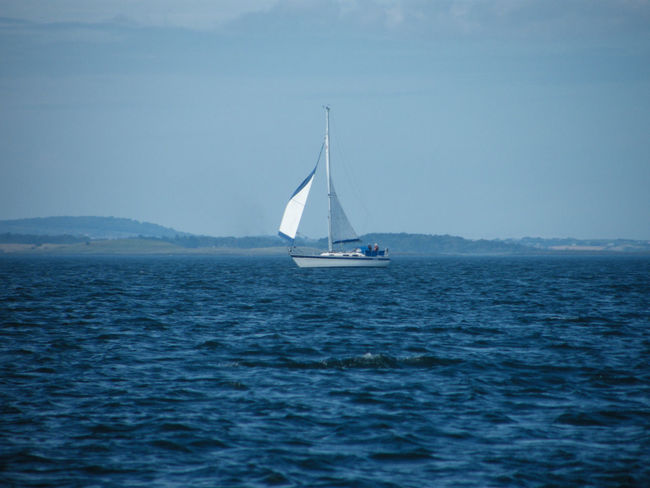 Ards Peninsula Day Horizon Over Water Nature Nautical Vessel No People Outdoors Sailboat Sailing Sea Sky Strangford Lough Water Yacht Yachting Plain Sailing Freedom Sea And Sky Northern Ireland Beauty In Nature Cloud - Sky Sailing Boat Adventure