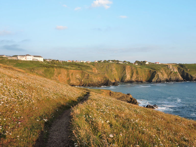 Coastline Path United Kingdom Beauty In Nature Blue Sky Coast Cornwall Day England Grass Nature Outdoors Sea Sky Summer Uk Water