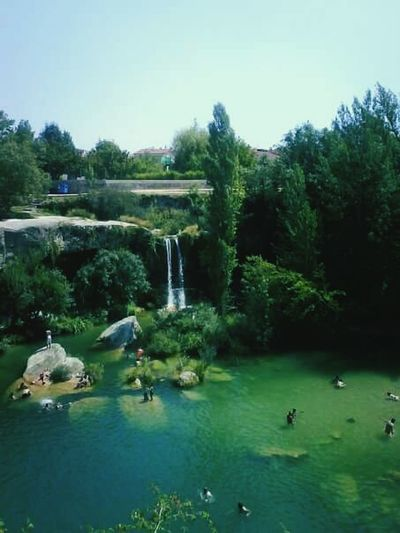 CASCADAS DE BURGOS ESPAÑA. Water Tree Bird Animal Themes Green Color Reflection Swimming Animals In The Wild Outdoors Fountain Nature Waterfront Day Lake Growth Pedal Boat Scenics No People Beauty In Nature Sky