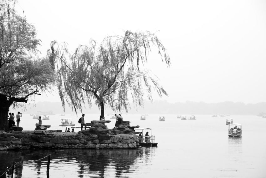 Perspectives On Nature Beauty In Nature Branch Clear Sky Day Lake Nature Nautical Vessel Outdoors Scenics Sky Tranquil Scene Tranquility Tree Water Waterfront Black And White Friday