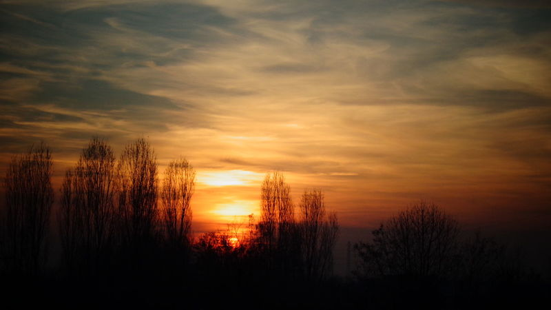 Sunset sky, December 2016 Beauty In Nature Contrast Contrast And Lights Desio Landscape Milan Province Nature No People Orange Clouds Outdoors Scenics Sky Sunset Tranquility Tree