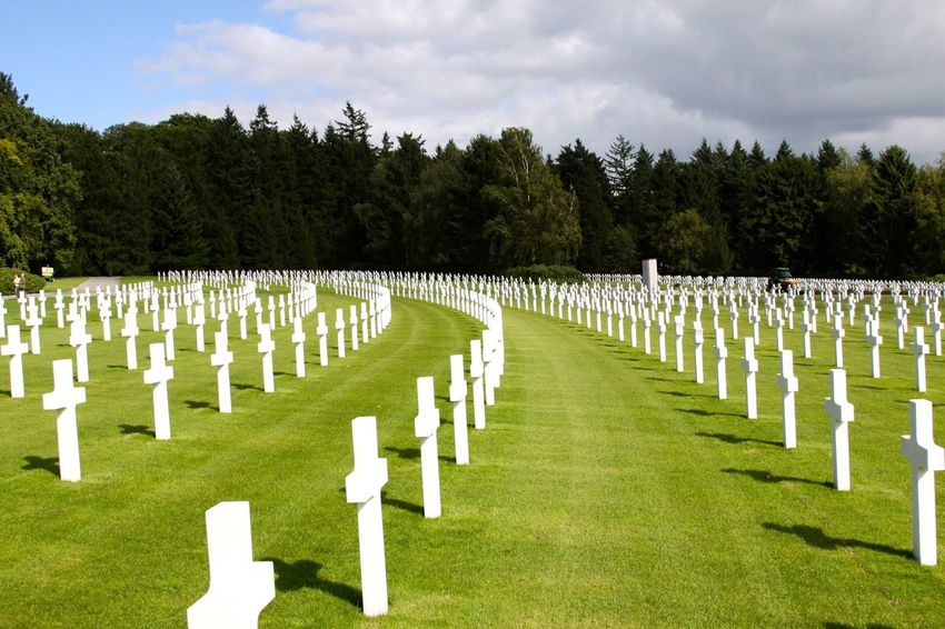 Work War I Military Cemetery at Verdun The Cost Of Freedom In Honor Of Those Who Fought For Us Verdun Memorial Cemetery Grave Plant Stone Memorial Tree Tombstone Grass Nature In A Row Sadness The Past Day History War Memorial Cloud - Sky No People Outdoors Cross