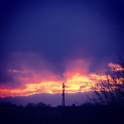 Sunset Skyline Trees London