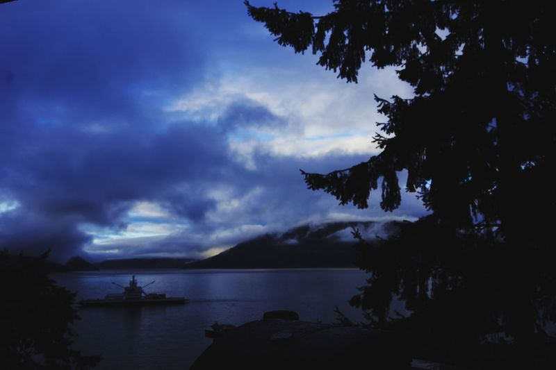 Am6:00 Morning Sea Saltspringisland Sky Water Cloud - Sky Tree Plant Tranquility Silhouette First Eyeem Photo A New Beginning
