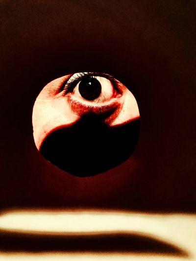Luna spiona First Eyeem Photo