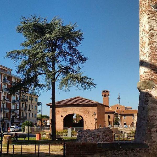 Cittadella e Sostegno dal Bastione Stampace Pisa igerspisa ig_pisa igerstoscana ig_toscana vivopisa vivo_toscana vivo_italia boiabello tuscanybuzz Tuscany pisaconnection instapisa nofilter sky blue tree walls