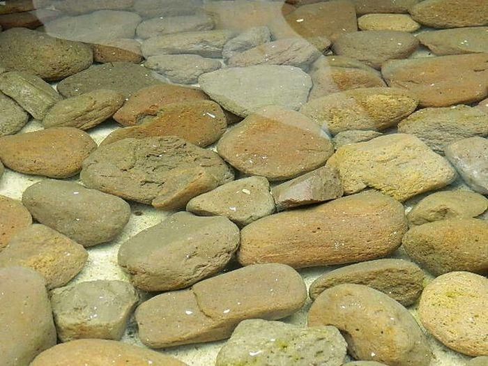piedras bajo el cristalino