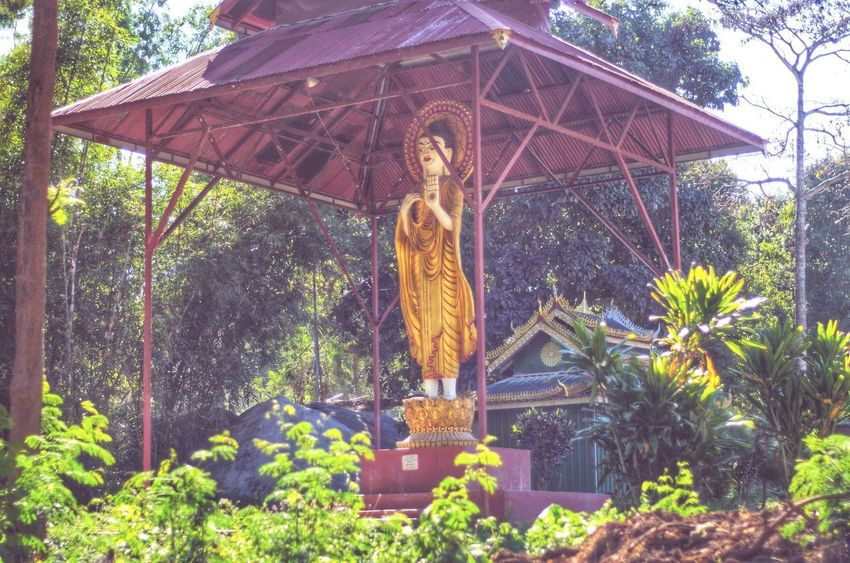Burma Myanmar Bhudha Statue Tree Day Outdoors No People Nature