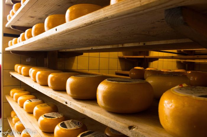 Cheese Volendam Perspectives Cheese Factory