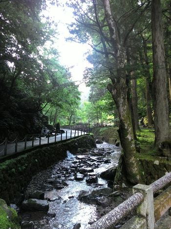 Eihei-temple