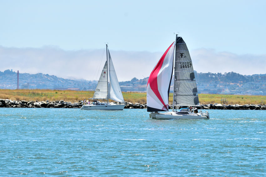 Sailing Middle Harbor 4 Port Of Oakland, Ca. Middle Harbor San Francisco Bay Sailing Sailboats Colorful Sails The Color Of SportHills Of San Francisco Alameda Shoreline Embarcadero Cove Harbor Channel Estuary Cove Calm Waters Waterway Marine Layer Landscape_Collection Landscape_photography Landscape