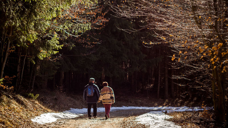 Couple Adult Adventure Beauty In Nature Day Forest Friendship Full Length Hiking Leisure Activity Lifestyles Men Nature Outdoors People Real People Rear View Standing Together Together Forever Togetherness Tree Two People Walking Women Be. Ready.
