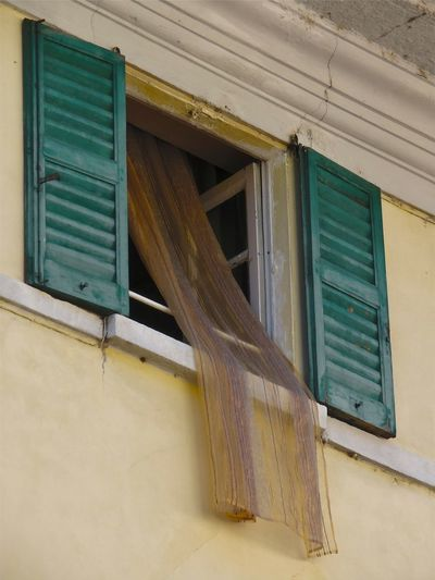Architecture Building Exterior Built Structure Curtains Day Exterior Façade Green Color Low Angle View No People Weathered Window