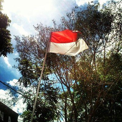 Merah putih di antara pepohonan.....Kamerahpgw_Kupang Kamerahpgw Xtraordinarynoya