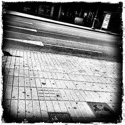 Streetphotography Blackandwhite Leme Cam Asfalto