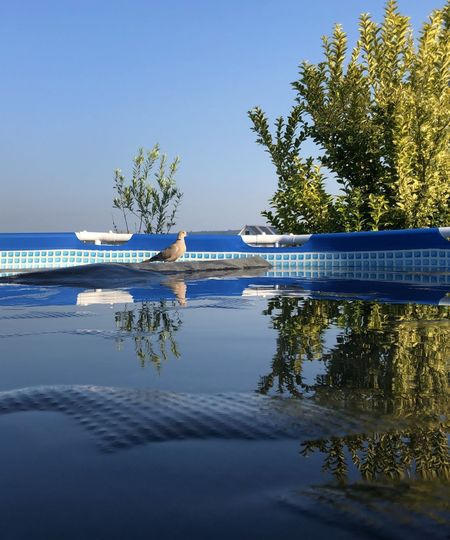 Swimming pool by lake against clear blue sky