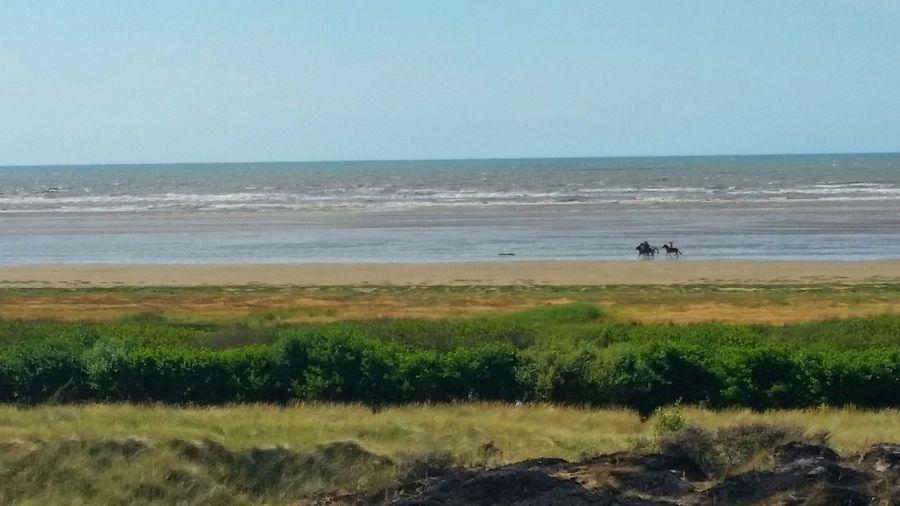 Beach Ainsdale Horseriding