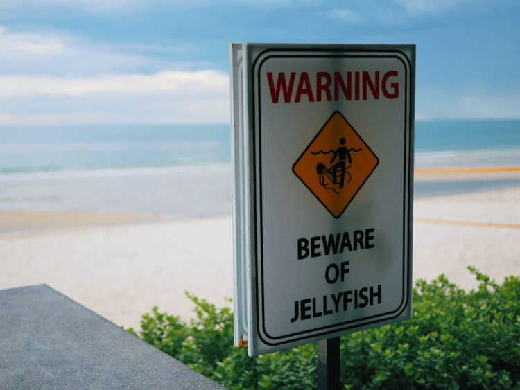 Beach Beware Close-up Communication Day Focus On Foreground Guidance Horizon Over Water Jellyfish Nature No People Outdoors Sea Signboard Sky Text Warning Warning Sign Water Western Script