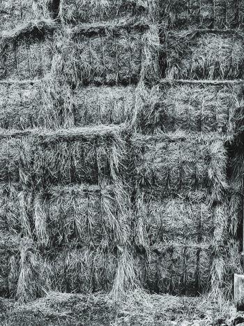 Paille Paille Textured  Abstract No People Farm Farm Life Bnwphotography Bnw_planet Bnwmood Bnwlovers Ferme Foin Grange Noiretblanc