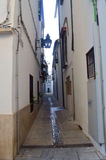 Punto De Fuga Taking Photos Córdoba Enjoying Life España Andalucía Nikon D3200