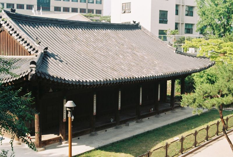 Architecture Building Exterior Built Structure Day Film Filmcamera Filmphotography Fm2 Fujifilm Nikon No People Outdoors Roof Tiled Roof  Tree