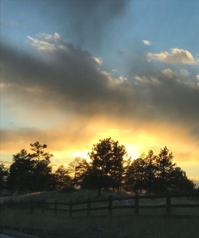Sunset Orange Color Sky Tree Beauty In Nature Outdoors Colorado Life Parker Colorado Cloud - Sky