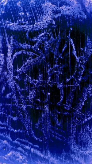 Blue Backgrounds Pattern Communication No People Tree Winter Technology Close-up Nature Snow Snowflake Day Star - Space Astronomy Galaxy Muddy Waters California Dreaming Freshness Metaphorical Photography Expressionism Photography Abstract Backgrounds Sky Purple Streaking Light