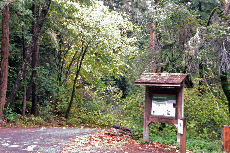 Hiking The Redwood Forest 1 Youth Camp Trail Kiosk Sam McDonald County Park La Honda, Ca Redwood Forest Second Growth Redwood Forest Nature 400+ Acres Aquired By McDonald 1917 50 Year Career With Stanford University Passed In 1957 & Left Property To Stanford County Aquired 1958 Part Of Pescadero Creek Park Complex 8,020 Acres San Mateo County Dept. Of Parks Landscape Landscape_photography Landscape_lovers Landscape_Collection