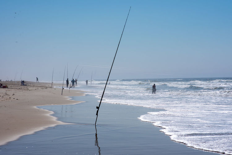 Fish Sea Water Sky Land Beach Beauty In Nature Scenics - Nature Horizon Over Water Sport Horizon Day Wave Nature Motion Real People Leisure Activity Aquatic Sport Group Of People Holiday Outdoors Fishing Fishing Rod