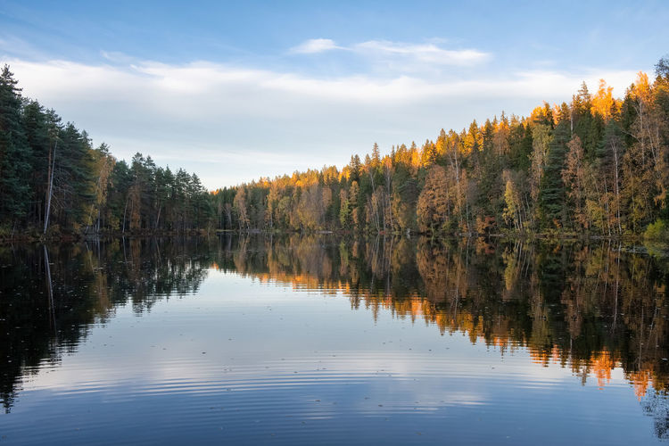Amazing autumn landscape with lake, golden colored forest and blue sky, outdoor travel background in Finland Tree Water Scenics - Nature Tranquil Scene Tranquility Waterfront Lake Sky Nature Reflection Lake Outdoors No People Cloud - Sky Beauty In Nature Idyllic Non-urban Scene Growth Forest Finland Tranquility Landscape Sunset Autumn Fall Colors Moment Of Silence
