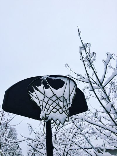 Basketball Hoop Outdoors Snow Sky Tree Nature Basketball Weathered View Perspective Backgrounds Winter Weather Snow ❄